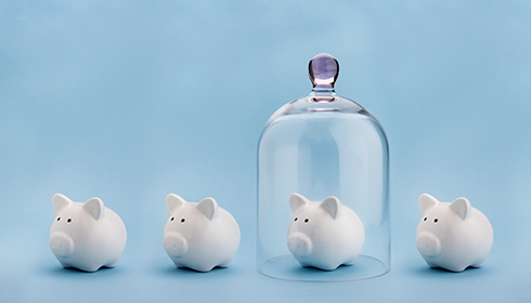Savings Certificate Secured Loan Piggy Bank